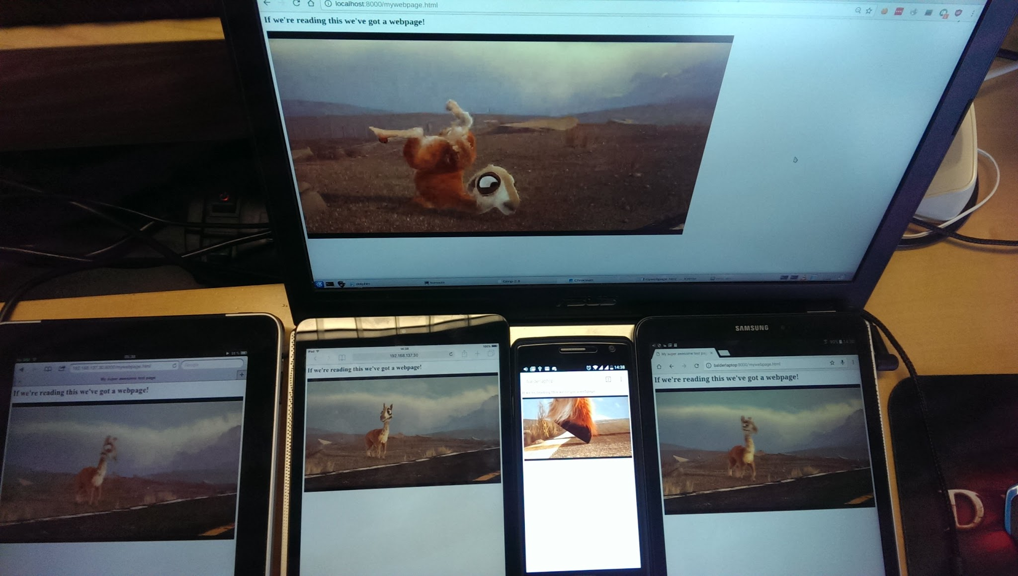 Image of video playback on multiple devices